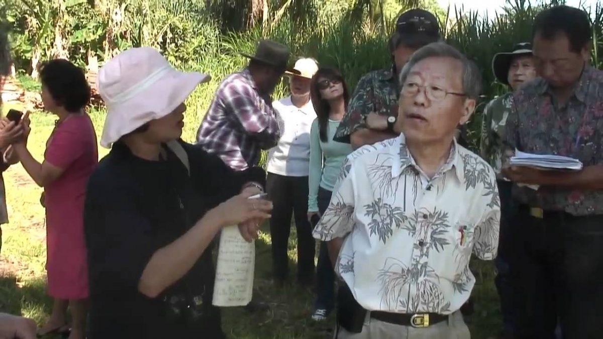 Master Cho on Hawai'ian Papaya and Tropical Natural Farming (Video)