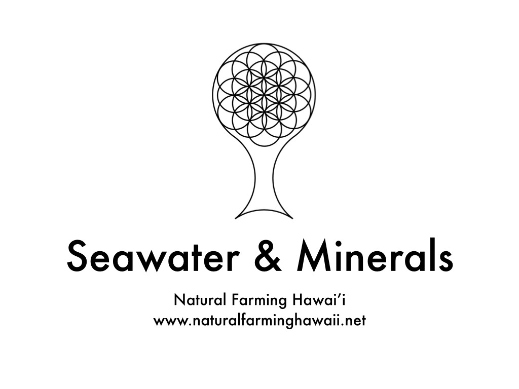 seawater and minerals.001