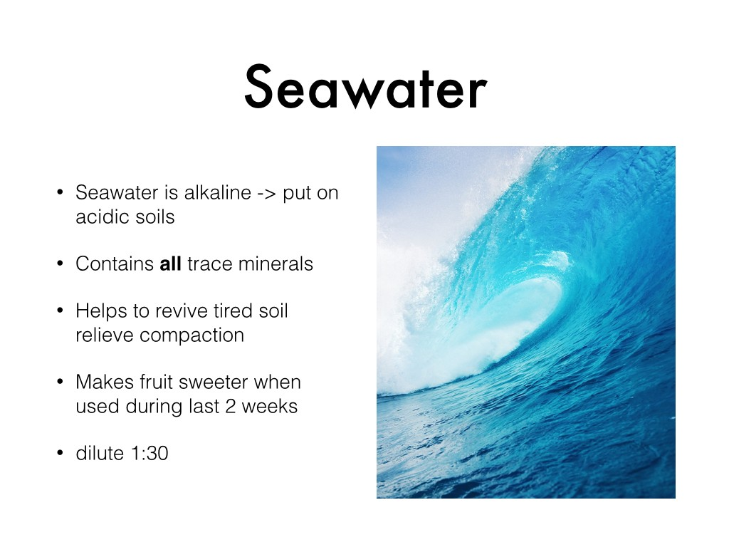 seawater and minerals.002