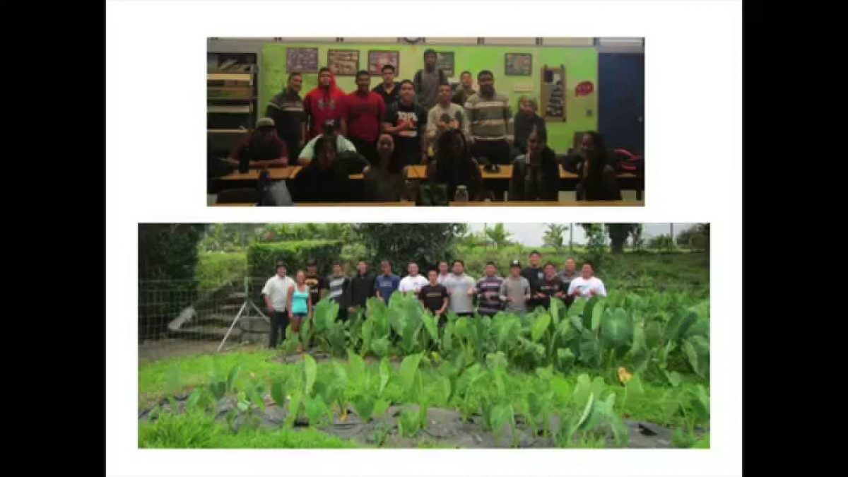 13 Week  Kalo Trial: Success 2x Bigger