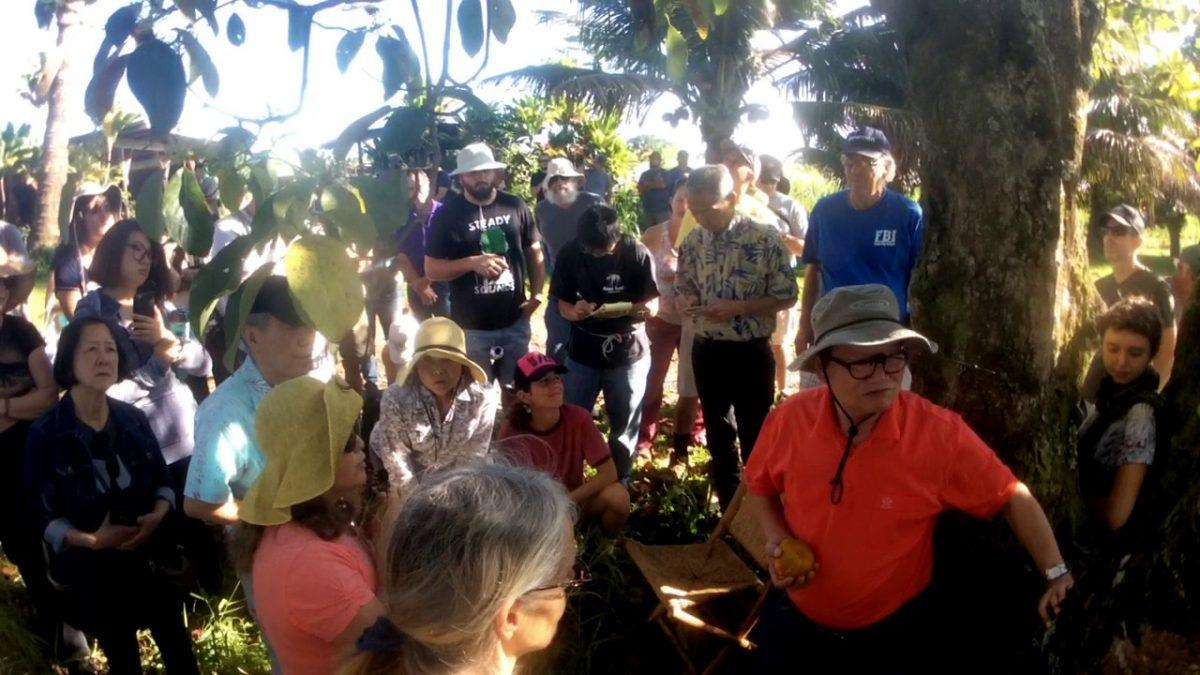 Master Cho's 2017 Hawai'i Visit